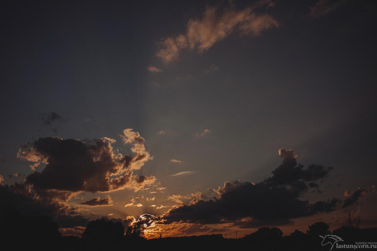 062Photo